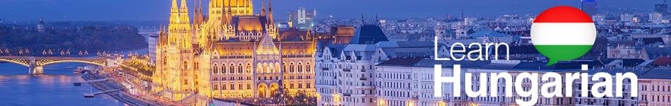 Curs limba maghiara pentru adulti - generala - conversatie, vocabular, socializare -  Cluj, Baia-Mare, Timisoara, Arad, Alba
