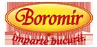 logo Boromir